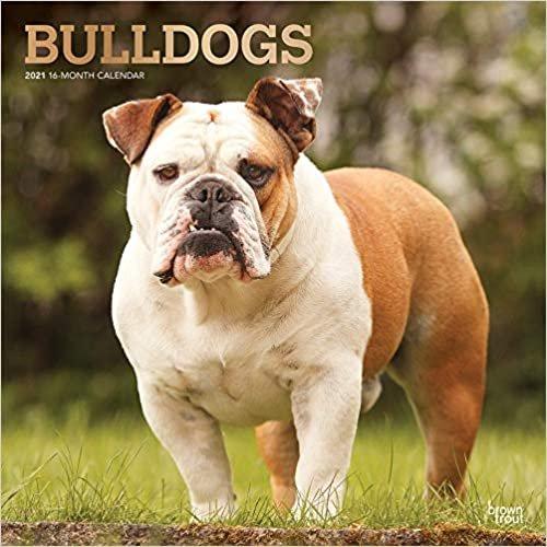 Bulldogs - Bulldoggen 2021 - 18-Monatskalender mit freier DogDays-App: Original BrownTrout-Kalender [Mehrsprachig] [Kalender]