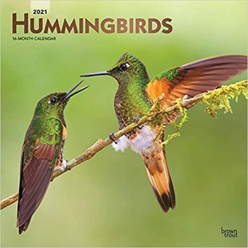 Hummingbirds - Kolibris 2021 - 16-Monatskalender: Original BrownTrout-Kalender [Mehrsprachig] [Kalender] (Wall-Kalender)