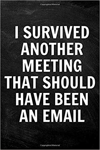 I Survived Another Meeting that Should Have Been an Email: 108-Pages Blank Lined Funny Notebook, Journal, Diary, Gag Gift (6x9 inches)