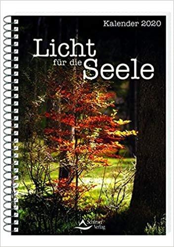 Schirner, M: Licht für die Seele 2020/Tischkal.