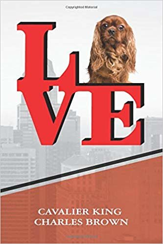 """Cavalier King Charles Brown: Love Park Writing Journal Notebook book is 120 pages 6""""x9"""""""