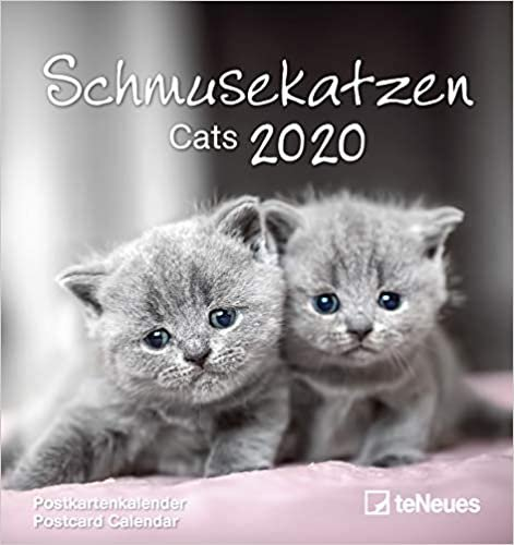 Cats 2020 Postcard Calendar