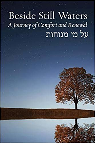 Beside Still Waters: A Journey of Comfort and Renewal (Bayit: Your Jewish Home)