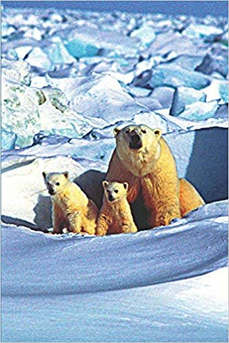 Polar Bear Mom & Baby Bears: Journal Notebook With Blank Lined Pages for Polar Bear Lovers, Cover With Mother Polar Bear and Two Cute Baby Cubs