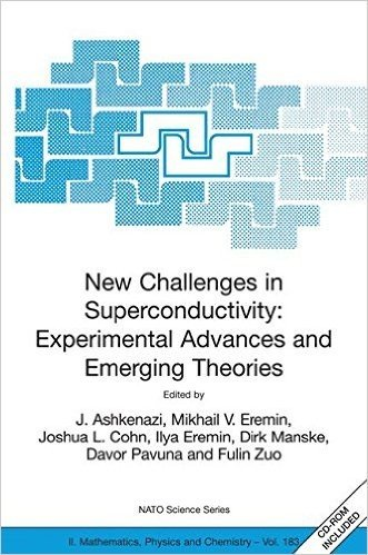 New Challenges in Superconductivity: Experimental Advances and Emerging Theories: Proceedings of the NATO Advanced Research Workshop, held in Miami, Florida, 11-14 January 2004 (Nato Science Series II:)
