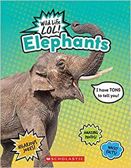 Elephants (Wild Life Lol!)