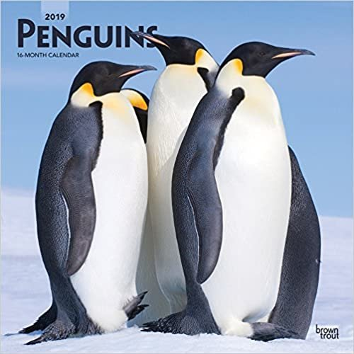 Penguins - Pinguine 2019 - 18-Monatskalender (Wall-Kalender)