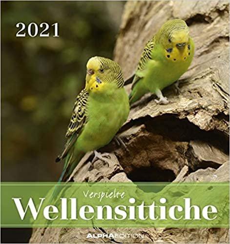 Wellensittiche 2021 - Postkartenkalender 16x17 cm - Budgies - zum aufstellen oder aufhängen - Geschenk-Idee - Gadget - Alpha Edition