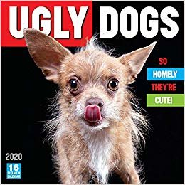 Ugly Dogs 2020 Calendar: So Homely They're Cute