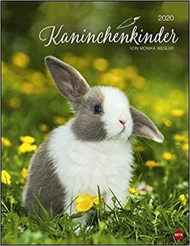 Wegler, M: Kaninchenkinder Posterkalender 2020