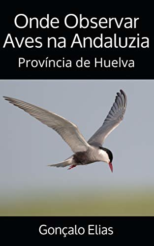 Onde Observar Aves na Andaluzia: Província de Huelva