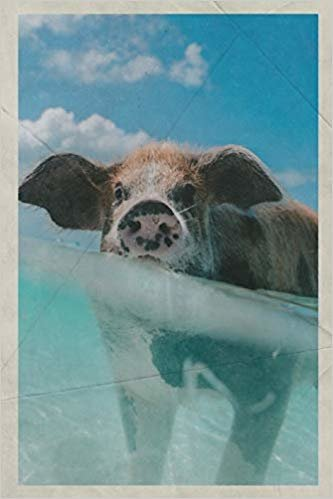 2020: Pig Beach Petite Planner Calendar Organizer Daily Weekly Monthly Vintage Retro Poster style for Cute Piglet fans