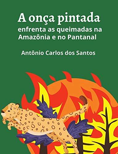 A onça pintada enfrenta as queimadas na Amazônia e no Pantanal (Coleção Mundo Contemporâneo Livro 2)