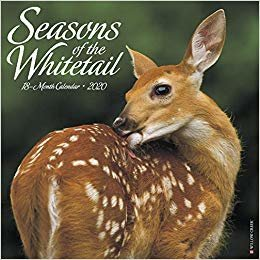 Seasons of the Whitetail 2020 Calendar
