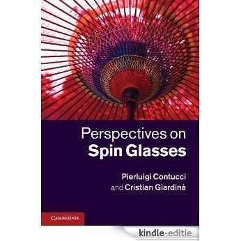 Perspectives on Spin Glasses [Kindle-editie]