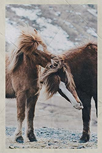 Notebook: Wild Horses in America Charming Composition Book Daily Journal Notepad Diary Vintage Retro Poster style for equine fans