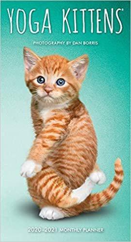 Yoga Kittens 2020 Two Year Pocket Planner