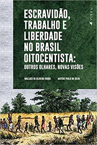 Escravidão, trabalho e liberdade no Brasil Oitocentista: Outros olhares, novas visões