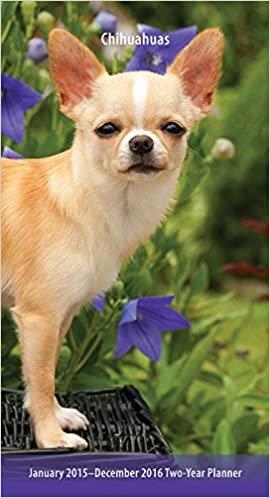 Chihuahuas 2015-2016 Pocket Planner