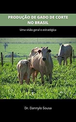 PRODUÇÃO DE GADO DE CORTE NO BRASIL: Uma visão geral e estratégica