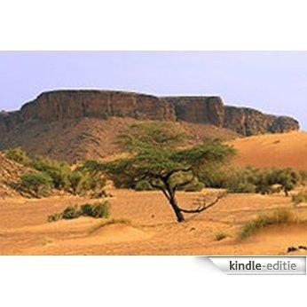 Monirama with the United Nations, Guinea-Bissau and Mauritania (English Edition) [Kindle-editie]