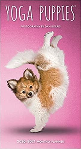 Yoga Puppies 2020 Two Year Pocket Planner