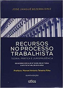 Recursos No Processo Trabalhista: Teoria, Prática E Jurisprudência