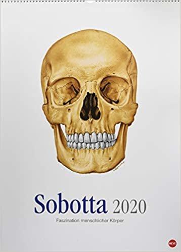 Sobotta Edition - Kalender 2020