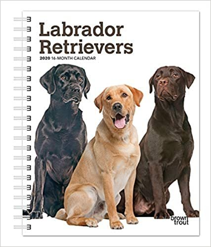Labrador Retrievers 2020 Diary