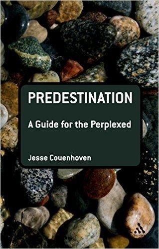 Predestination: A Guide for the Perplexed baixar