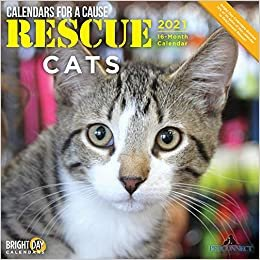 Rescue Cats 2021