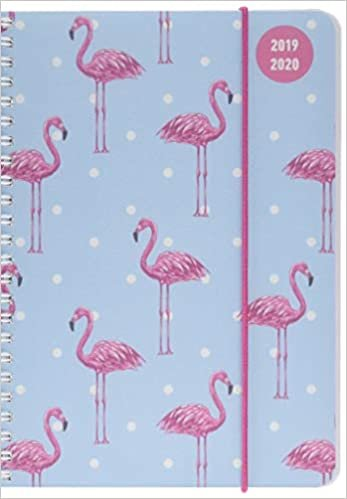 Collegetimer A5 Flamingo 2019/2020 - Ringbuch