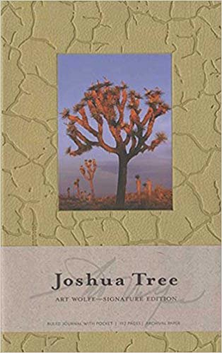JOSHUA TREE HARDCOVER RULED JOURNAL (Insights Journals)