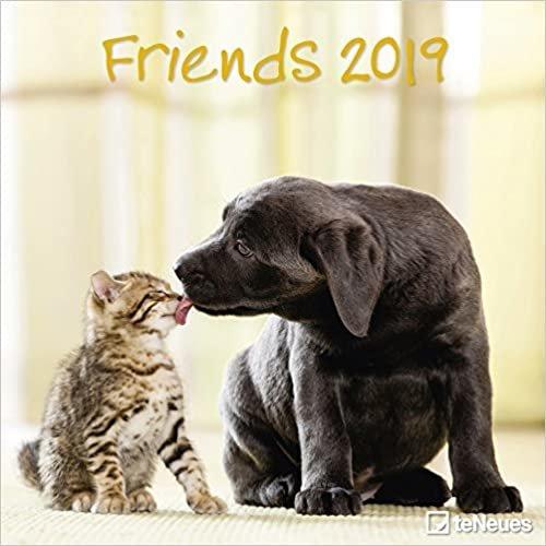 2019 Friends Calendar- teNeues Grid Calendar- Animal Calendar- 30 x 30 cm