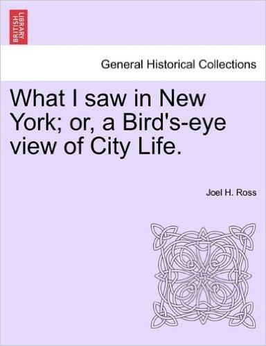 What I Saw in New York; Or, a Bird's-Eye View of City Life.