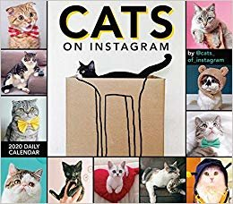 Cats on Instagram 2020 Calendar