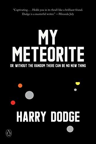 My Meteorite: Or, Without the Random There Can Be No New Thing (English Edition)