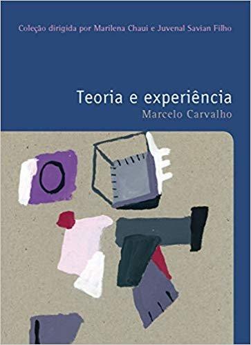Teoria e experiência