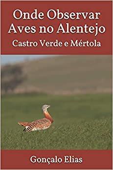 Onde Observar Aves no Alentejo: Castro Verde e Mértola
