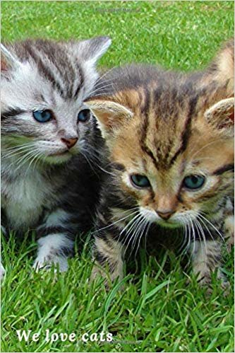 We love cats: Cat Notebook, Journal, Diary (110 Pages, Lined, 6 x 9)