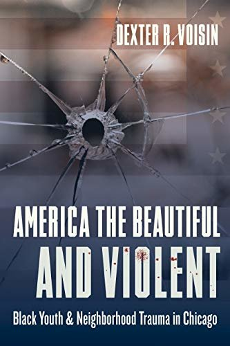 America the Beautiful and Violent: Black Youth and Neighborhood Trauma in Chicago (English Edition)