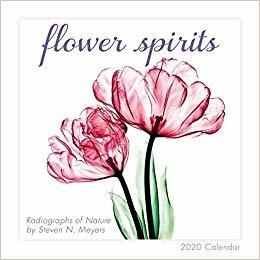 Flower Spirits 2020 Calendar: Radiographs of Nature by Steven N. Meyers