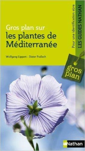Les plantes de Méditerranée