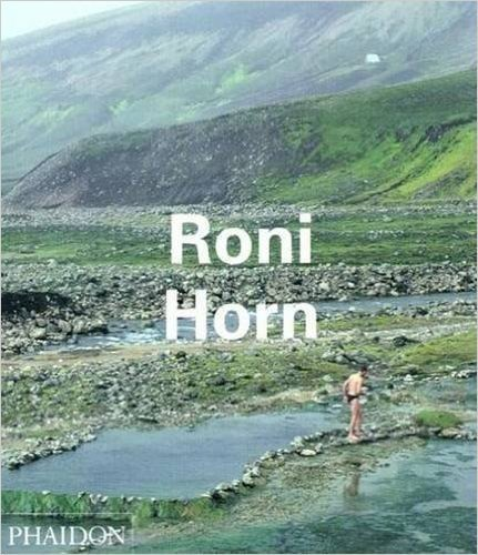 Roni Horn (Contemporary Artists)