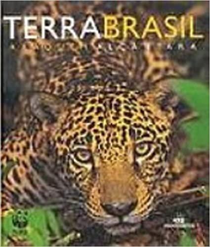 Terra Brasil