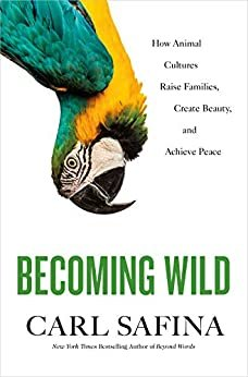 Becoming Wild: How Animal Cultures Raise Families, Create Beauty, and Achieve Peace (English Edition)