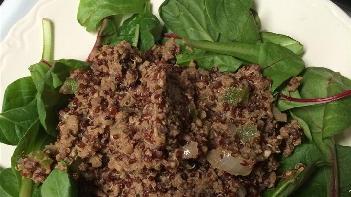 Dirty Quinoa with Venison Burger download