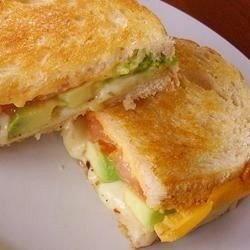 Grown Up Grilled Cheese Sandwich download