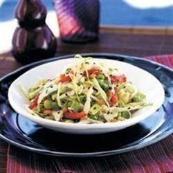 Crunchy Asian Veggie Slaw