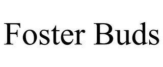 FOSTER BUDS